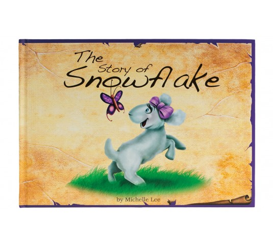 The Story of Snowflake