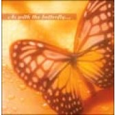 CD Card - Butterflies